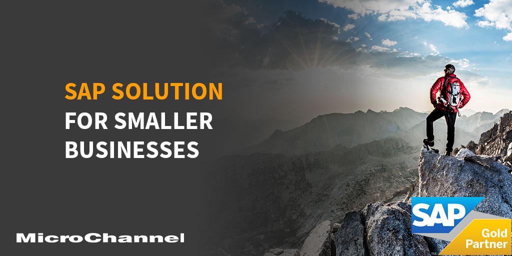sap solution for smaller businesses