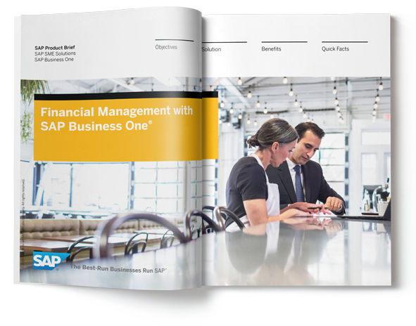 SAP Business One Financial Management