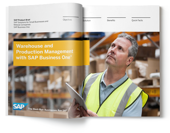 sap business one warehouse