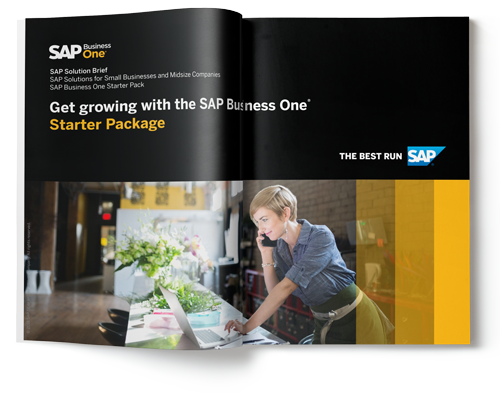 sap business one starter pack microchannel