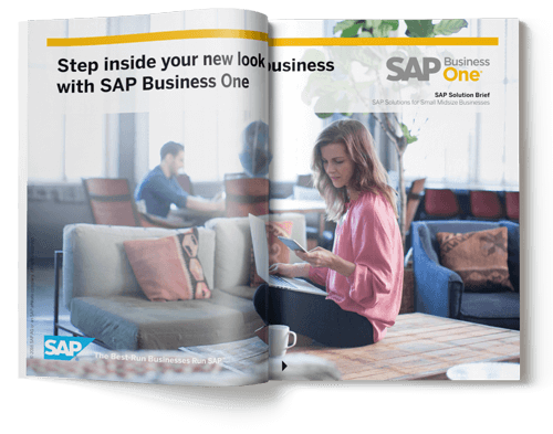 sap business one solution brief